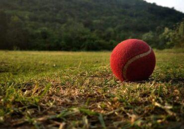 पीपीएल क्रिकेट : बुटवललाई हराउँदै विराटनगर 'प्लेअफमा'