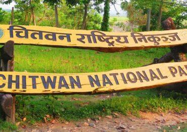 भारतबाट नेपाल छिर्नेले चितवन राष्ट्रिय निकुञ्जको बाटो प्रयोग गरेपछि…